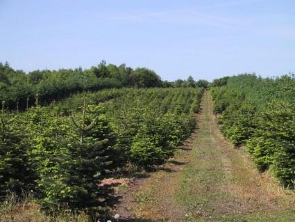 Participez au développement de l'agriculture bio en Pays de Lorient grâce à l'épargne citoyenne!
