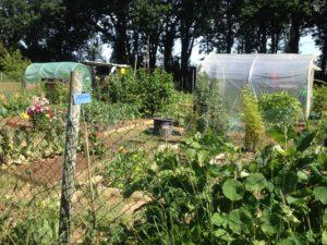 Landerneau, Fête des jardins @ kergreis jardin partagé