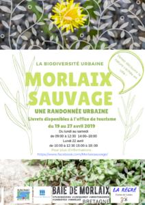 Morlaix (29), Randonnée Biodiversité urbaine @ Office du tourisme