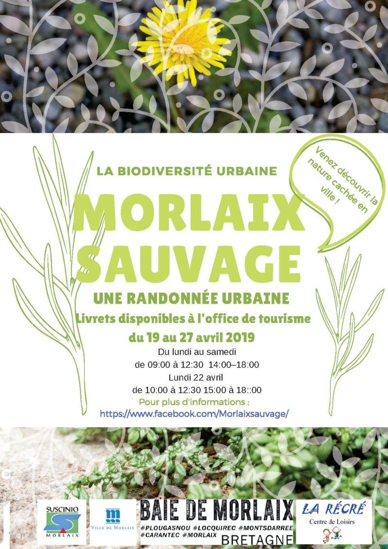 Suscinio : Morlaix sauvage, la randonnée urbaine