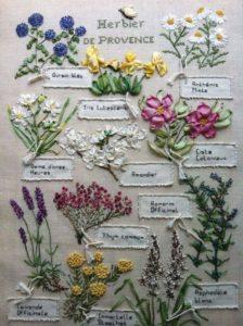 Commana (29), Balade botanique et herboriste dans les Monts d'Arrée @ La route du lin