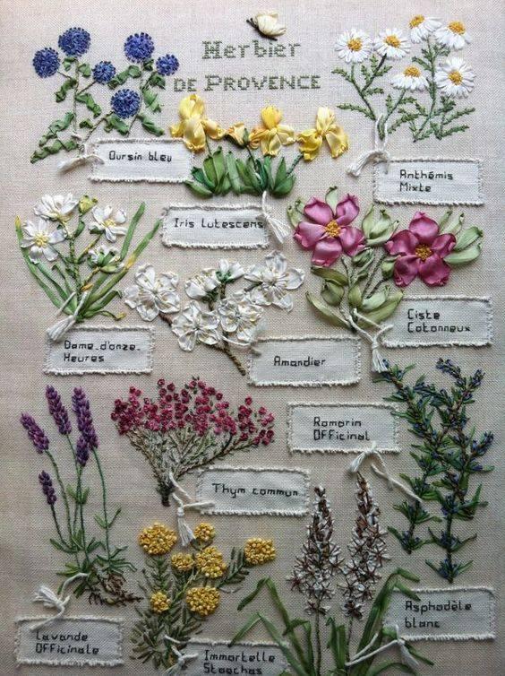 Commana (29), Balade botanique et herboriste dans les Monts d'Arrée