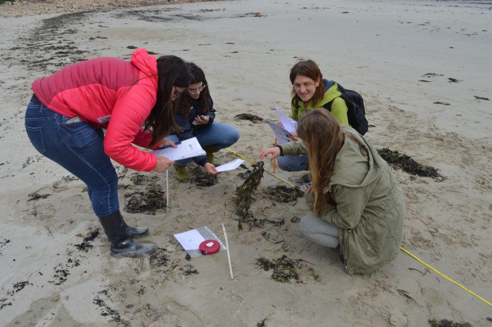Les sciences participatives, l'avenir de l'écologie!