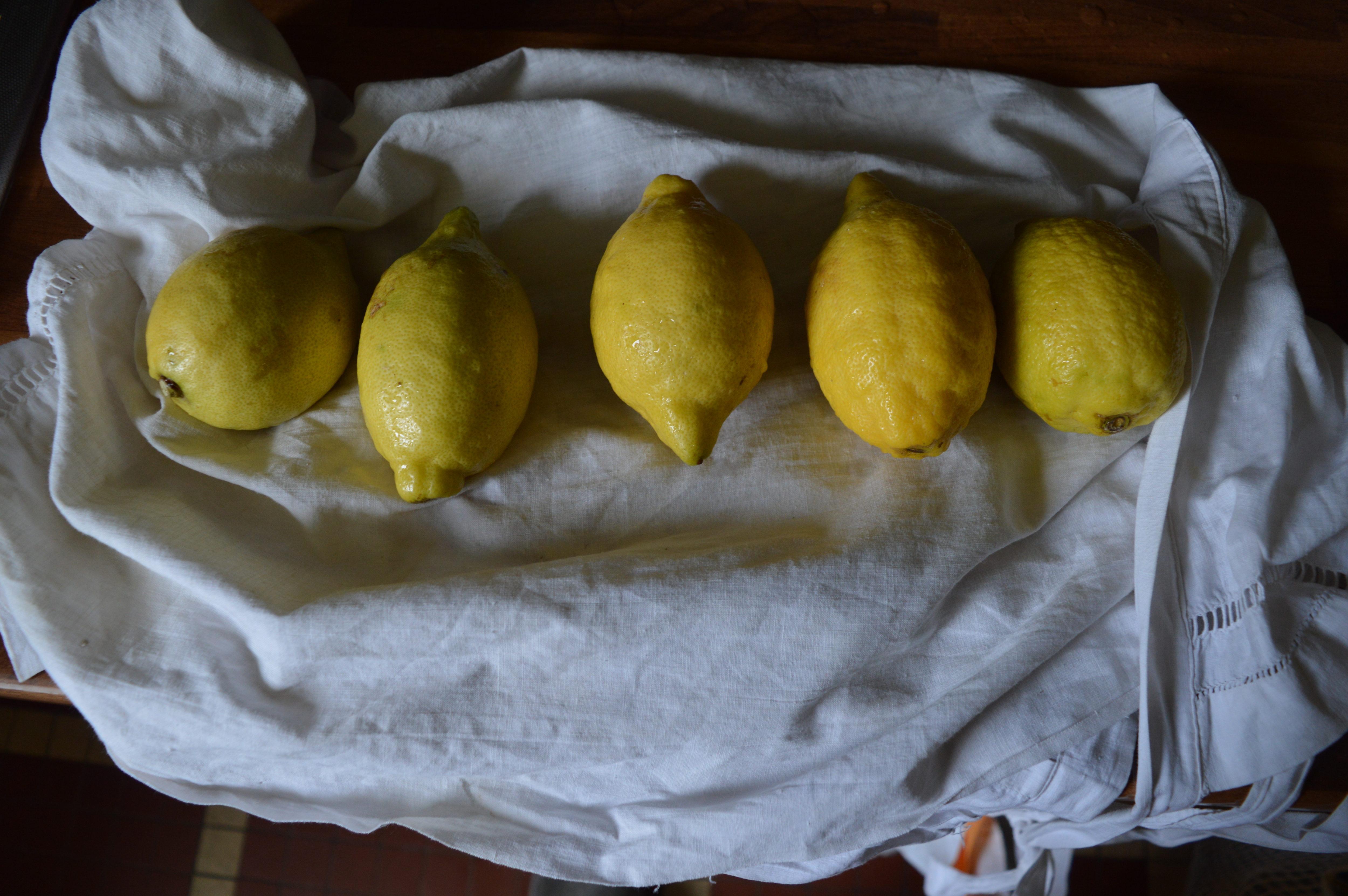 citrons confits séchage
