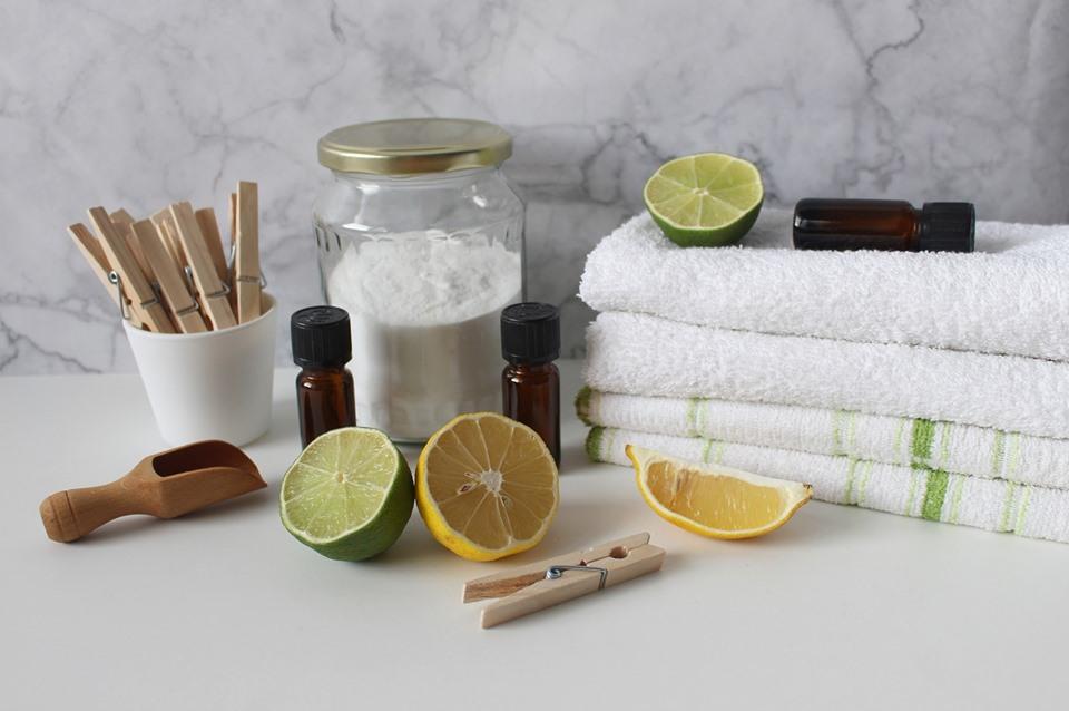 Vannes (56) Faire ses produits d'entretien naturels