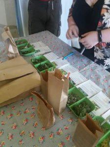 Trégarvan (29), Atelier herboristerie -Tous égaux au travers les maux ? @ Musée de l'école rurale en Bretagne Kergroas