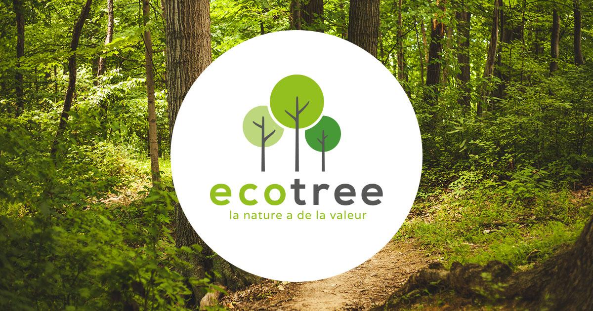 Eco-tree. La start-up qui permet d'investir dans la reforestation