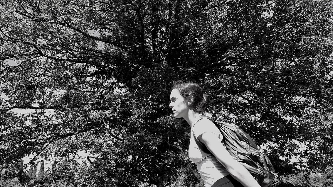 Pont-Scorff (56), L'Appel de la forêt – randonnée/spectacle