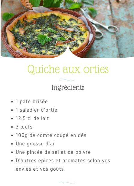 recette_quiche_aux_orties