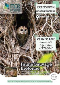 Rennes (35), Faune sauvage bretonne - Expo photos @ MCE de Rennes