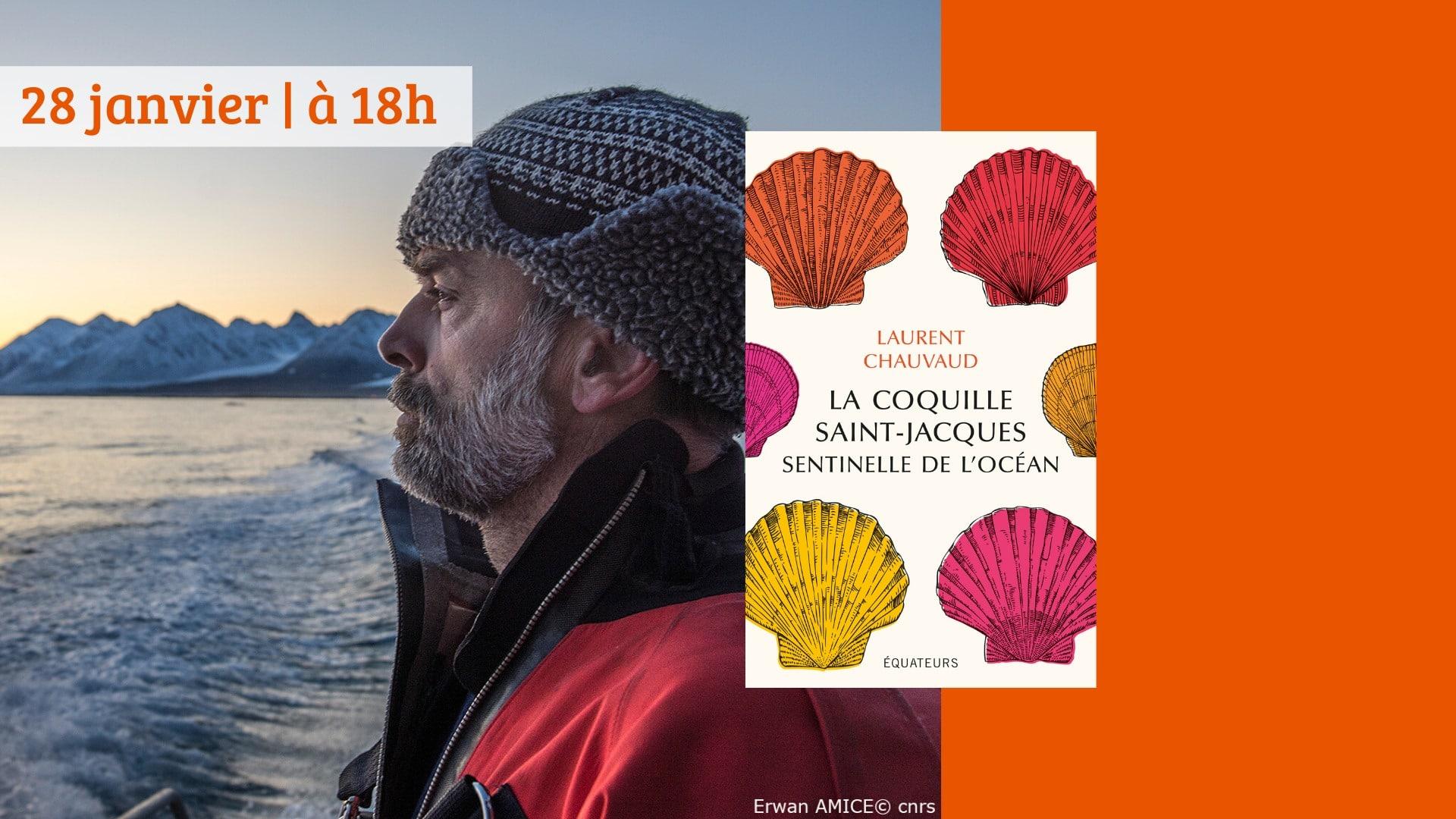 Brest (29), La coquille Saint-Jacques sentinelle de l'océan/Rencontre