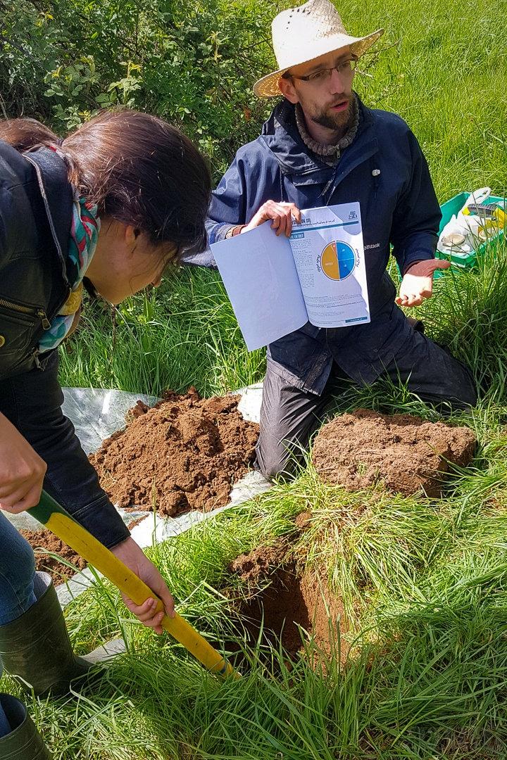 Locoal-Mendon (56), Conception et Permaculture – stage pratique de 3 jours