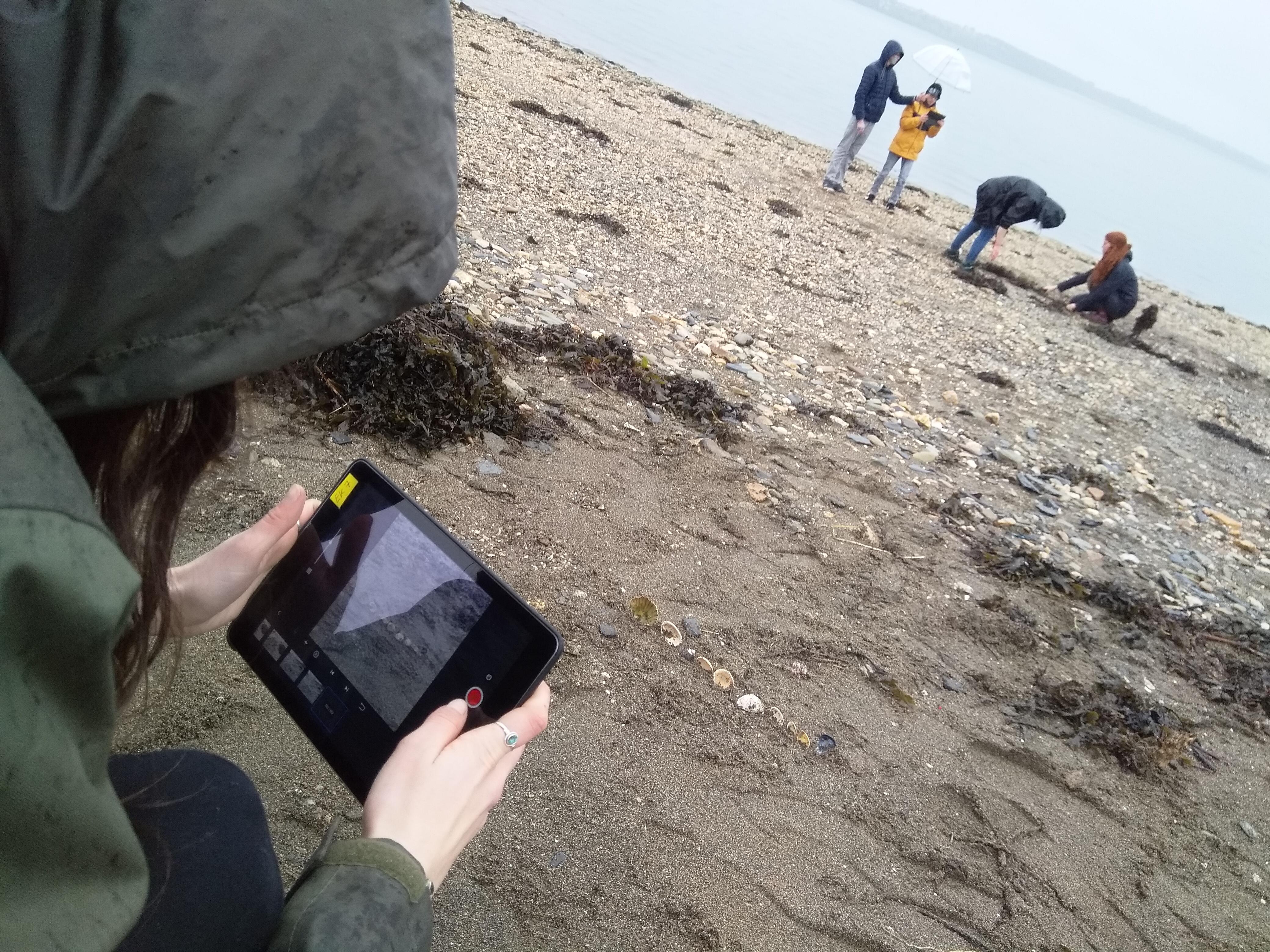 Laissons des plages vivantes : laissons les laisses de mer !