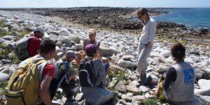 Pleumeur Bodou (22) Sortie nature Flore du littoral @ Station LPO de l'Ile Grande