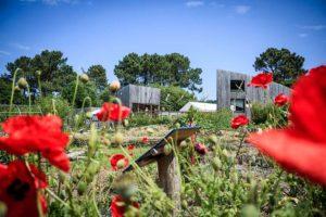 """Pleumeur-Bodou (22), Conf'Atelier """"Jardiner sur Sol Vivant ! @ EcoCentre Trégor"""