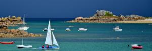 Penvenan (22), Journées d'été des Scarabées - Forum de l'écologie concrète @ Centre équestre de Port-Blanc