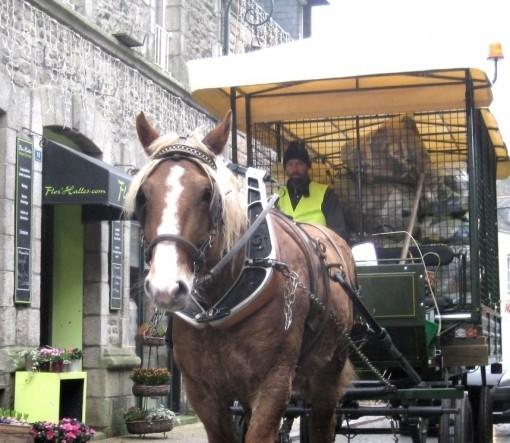 L'utilisation du cheval revient  au galop dans les communes bretonnes