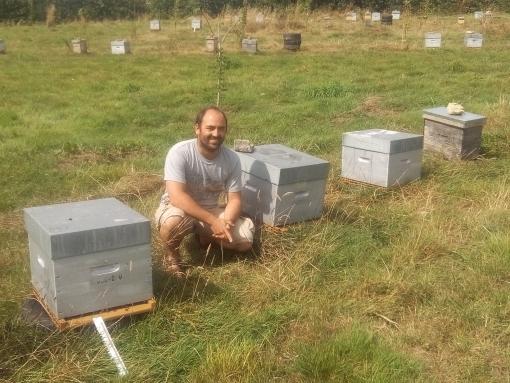 Apiculture: de la transhumance aussi pour les abeilles!