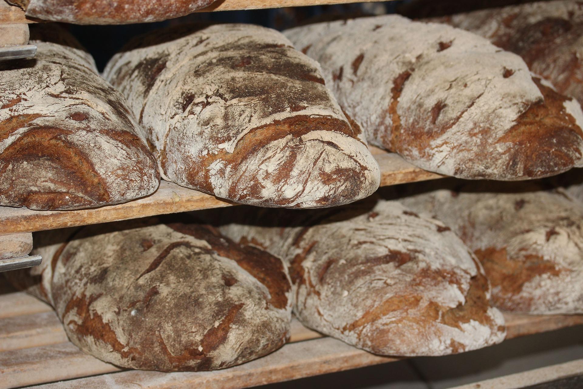Fabien, le paysan-boulanger qui voulait être autonome