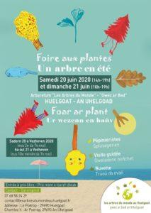 Huelgoat (29), Foire aux plantes - un arbre en été @ Les Arbres du Monde au Huelgoat