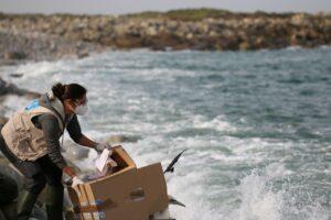 Visioconférence : Les centres de soins à la faune sauvage : fonctionnement, enjeux, avenir