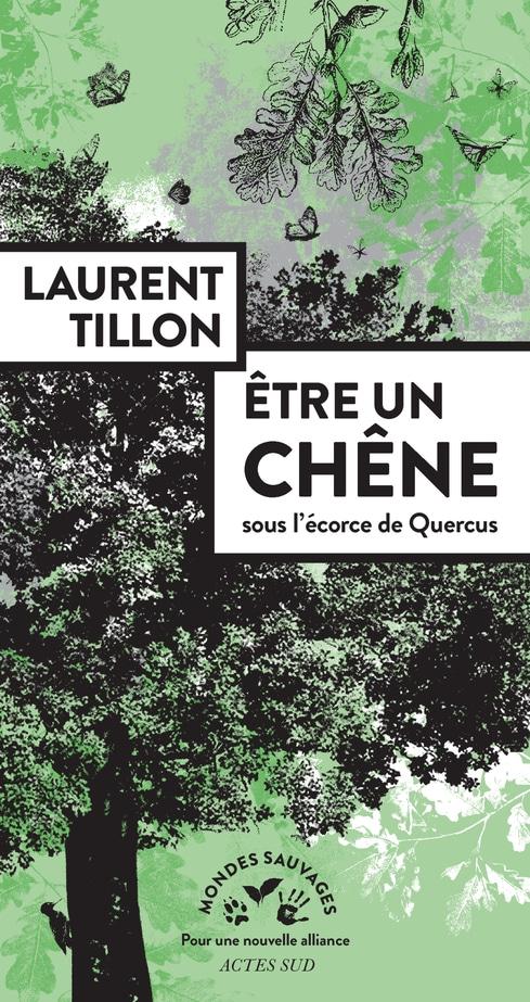 Saint-Servais (22), Etre un chêne – Rencontre avec Laurent Tillon – Lieux Mouvants