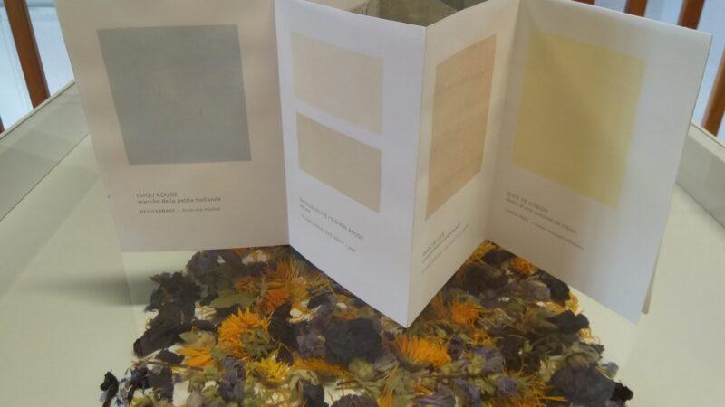 Encres végétales aux couleurs subtiles pour l'atelier Sérigraphie de Elise Hallab